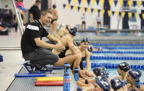 Zips dunk competition in swimming and diving