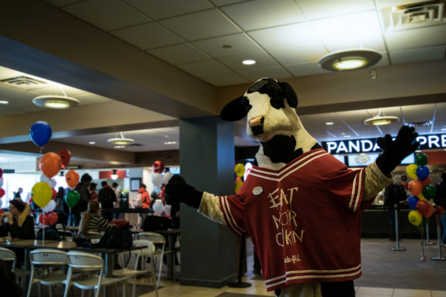 Mr.+Cow+celebrates+the+opening+of+Chick-fil-A+in+the+Student+Union+on+Tuesday.+