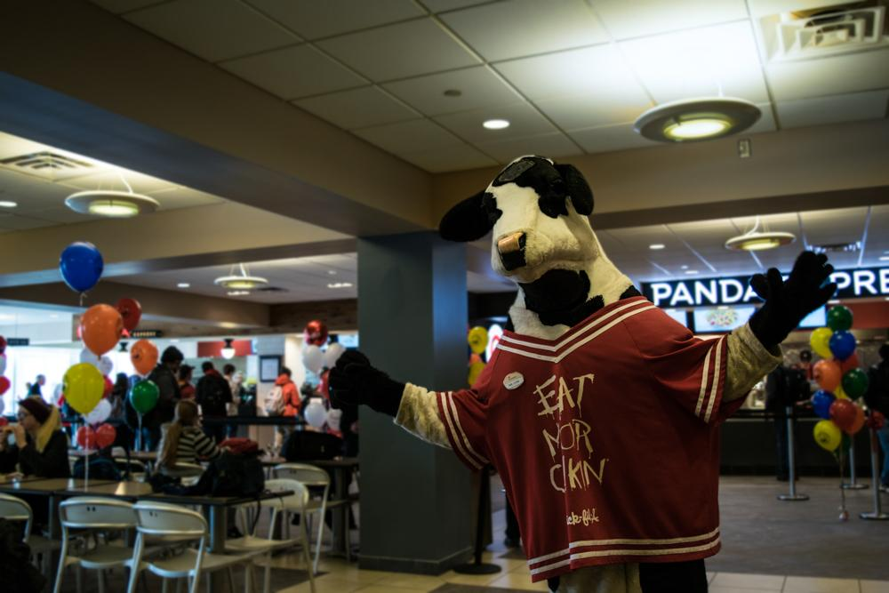 Mr. Cow celebrates the opening of Chick-fil-A in the Student Union on Tuesday.