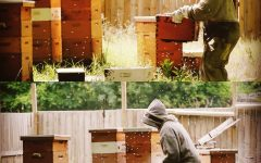 Akron Honey Company: Hidden Gem of Akron 12-08-16