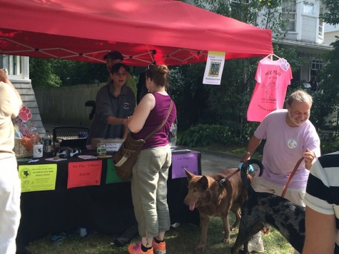 Akron Dog Park organization along with many others had booths throughout the festival