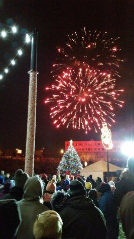 The crowd looks on as the fireworks light up the night sky.