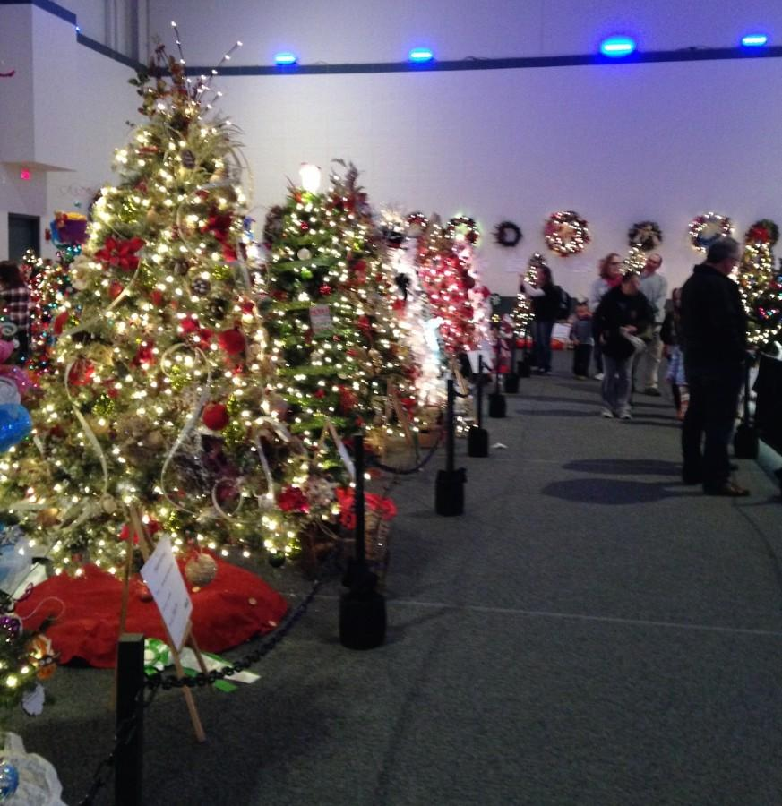 Hundreds+of+trees+donated+by+different+organizations+were+on+display+in+the+Knight+Center.