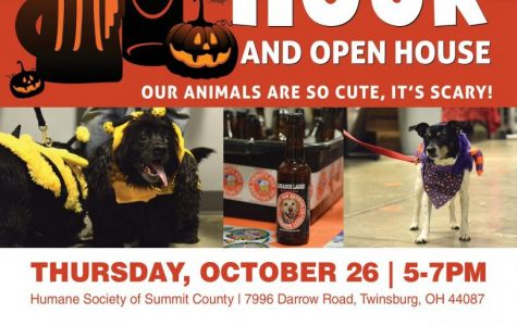 Yappy Hour: Getting into the Halloween Spirit while Learning about the Humane Society of Summit County
