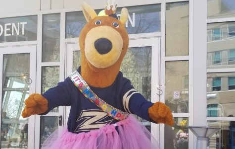 Zippy Celebrates Her Birthday with Cupcakes, Balloon Animals, Campus Cupboard Donations