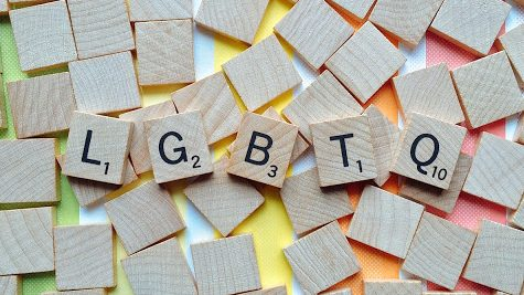 LGBTQ+ Terms to Know for Diversity Week