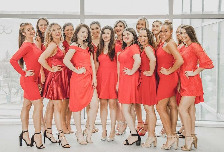 The 2019 Red Dress Gala raised over $9,000 for the Alpha Phi Foundation.