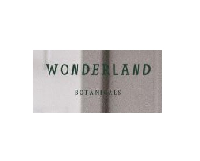 wonderland11-1693dfb1